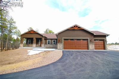 El Paso County Single Family Home For Sale: 14973 Snowy Pine Point