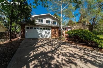 Colorado Springs Single Family Home For Sale: 2765 Oro Blanco Drive