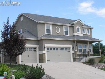 Colorado Springs Single Family Home For Sale: 4770 Farmingdale Drive
