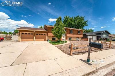 Colorado Springs Single Family Home For Sale: 3905 Allgood Drive