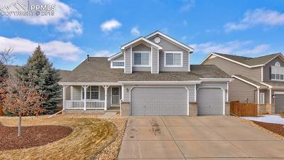 Castle Rock Single Family Home For Sale: 4193 Black Feather Trail