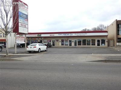 Commercial For Sale: 908 N Circle Drive #E