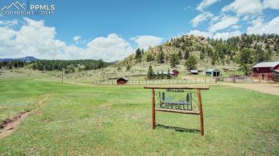 Guffey Farm For Sale: 3193 County 71 Road