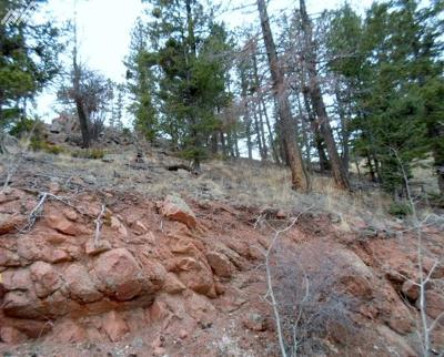 Cripple Creek Residential Lots & Land For Sale: 439 Andes Road