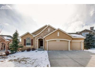Flying Horse Single Family Home For Sale: 2541 Crooked Vine Court