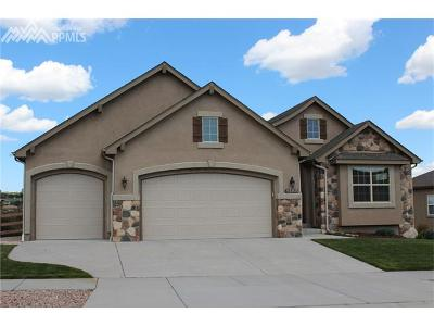 Colorado Springs Single Family Home For Sale: 1588 Yellow Tail Drive