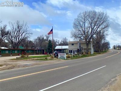 Commercial For Sale: 808 Caribou Street