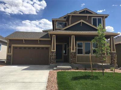 Single Family Home For Sale: 1745 Sandy Shore Lane