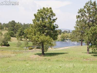 Colorado Springs Residential Lots & Land For Sale: 17640 Cabin Hill Lane