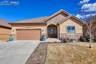 Colorado Springs Single Family Home For Sale: 8173 Regiment Court