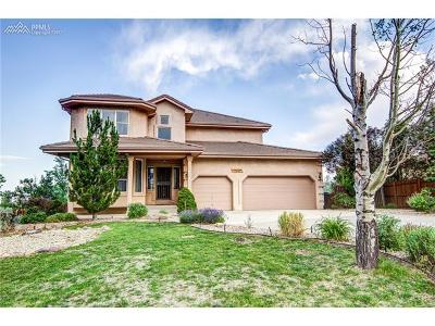 Colorado Springs Single Family Home For Sale: 725 Sableglen Court