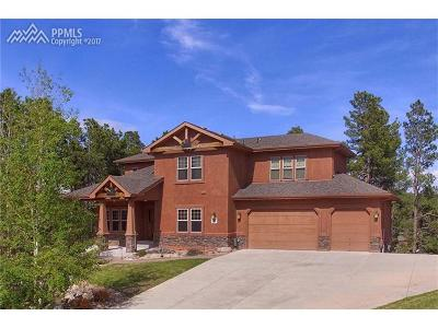 Single Family Home For Sale: 1183 Greenland Forest Drive