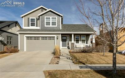 Colorado Springs Single Family Home For Sale: 6657 Hidden Hickory Circle