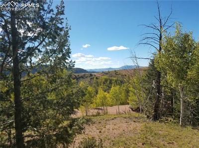 Cripple Creek Residential Lots & Land For Sale: 110 Ajax Court