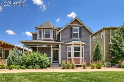 Colorado Springs Single Family Home For Sale: 253 S Raven Mine Drive