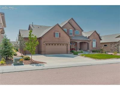 Colorado Springs Single Family Home For Sale: 2441 Fieldbrook Court