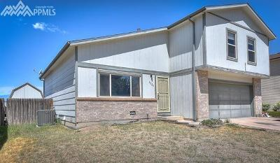 Colorado Springs Single Family Home For Sale: 3920 Shining Star Drive