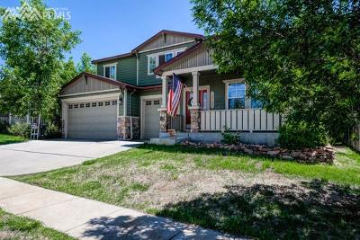 Colorado Springs Single Family Home For Sale: 7127 Quiet Pond Place