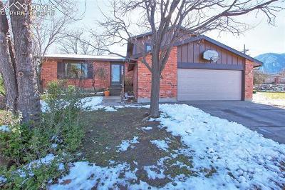 Colorado Springs Single Family Home For Sale: 4235 Edinburgh Court