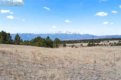 Colorado Springs Residential Lots & Land For Sale: 9226 Nature Refuge Way
