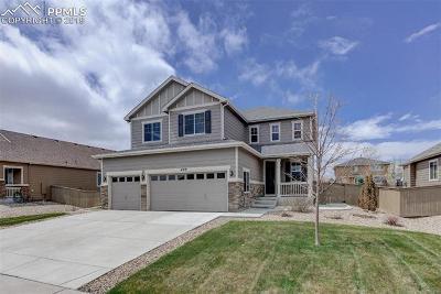 Castle Rock Single Family Home For Sale: 493 Sudbury Street