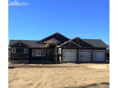 El Paso County Single Family Home For Sale: 4620 Topaz Drive