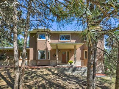 Monument Single Family Home For Sale: 475 St Moritz Way