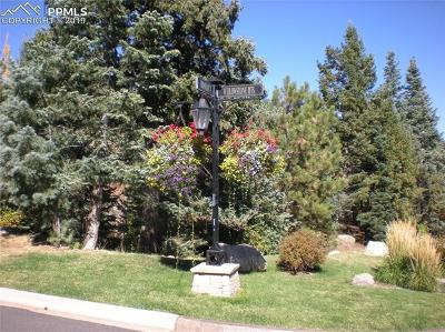 Colorado Springs Residential Lots & Land For Sale: 5005 Broadlake View