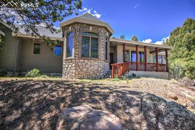 Single Family Home For Sale: 197 Bird Point Road