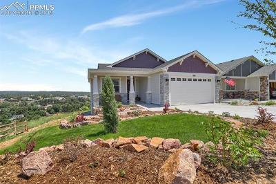 Colorado Springs Single Family Home For Sale: 989 Uintah Bluffs Place
