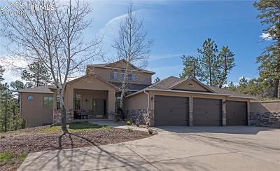 Douglas County, El Paso County, Park County, Teller County Single Family Home For Sale: 7906 Inca Road