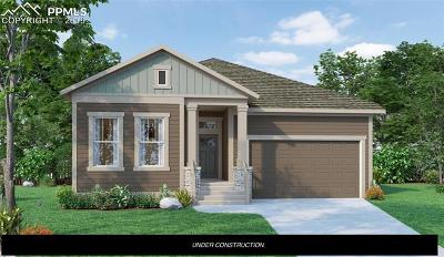 Colorado Springs Single Family Home For Sale: 10002 Prima Run Place