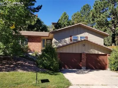 Colorado Springs Single Family Home For Sale: 185 Raven Hills Road
