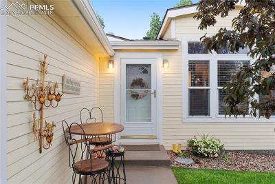 Colorado Springs Single Family Home For Sale: 4704 Pika Point
