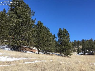 Residential Lots & Land For Sale: 197 Rabbit Circle