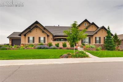 Colorado Springs Single Family Home For Sale: 2277 Rainbows End Point