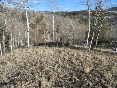 Cripple Creek Residential Lots & Land For Sale: 137 No Name Lane