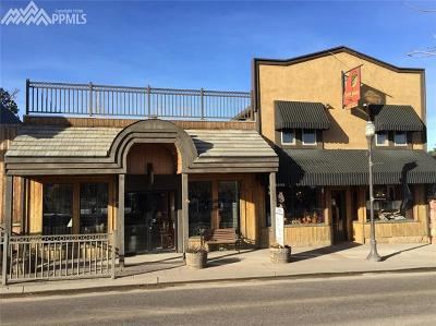 Woodland Park Commercial For Sale: 214 W Highway 24 Highway
