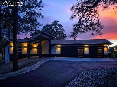Colorado Springs Single Family Home For Sale: 17520 Pond View Place