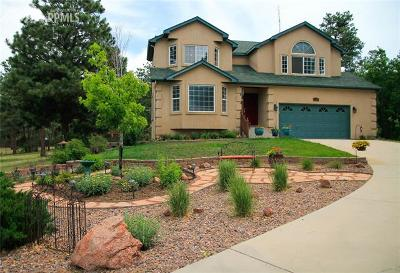 Colorado Springs Single Family Home For Sale: 11265 S Holmes Road