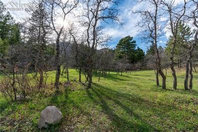 Broadmoor Residential Lots & Land For Sale: 4790 Broadlake View