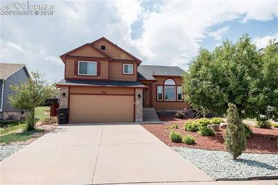Colorado Springs Single Family Home For Sale: 2540 Weyburn Way