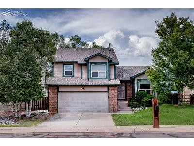 Single Family Home For Sale: 4385 Stonehaven Drive