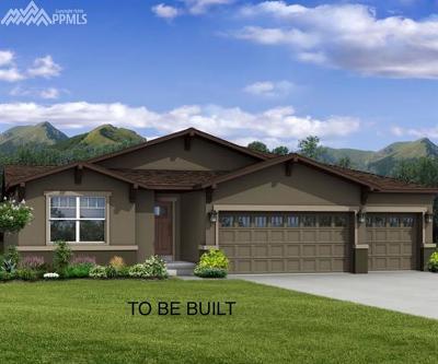 Colorado Springs Single Family Home For Sale: 8116 De Anza Peak Trail