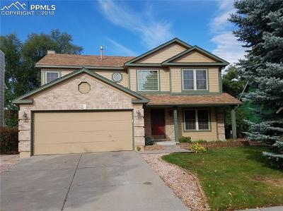Colorado Springs Single Family Home For Sale: 5066 Plumstead Drive