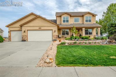 Peyton, Falcon Single Family Home For Sale: 10731 Greenbelt Drive
