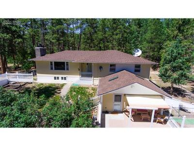 Colorado Springs Multi Family Home For Sale: 14710 Roller Coaster Road