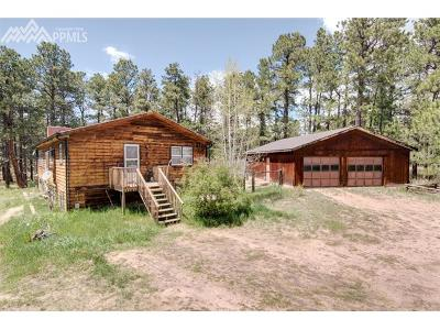 Elbert CO Rental For Rent: $1,150