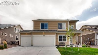 Colorado Springs Single Family Home For Sale: 6963 Tahoe Rim Drive