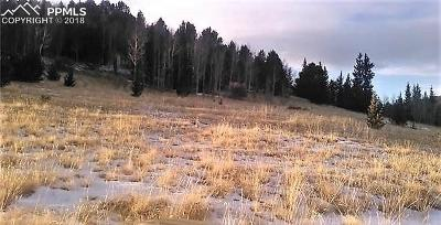 Cripple Creek Residential Lots & Land For Sale: 7070 Monarch Drive